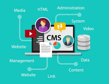 Professional CMS Website Development In Ottawa